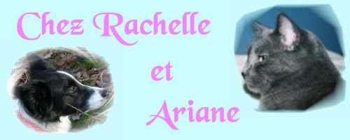 Chez Rachelle & Ariane Index du Forum