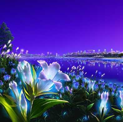 beau-fond-d-ecran-fleur-paysage-flora