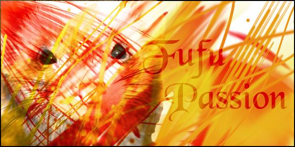 fufu-passion  Index du Forum