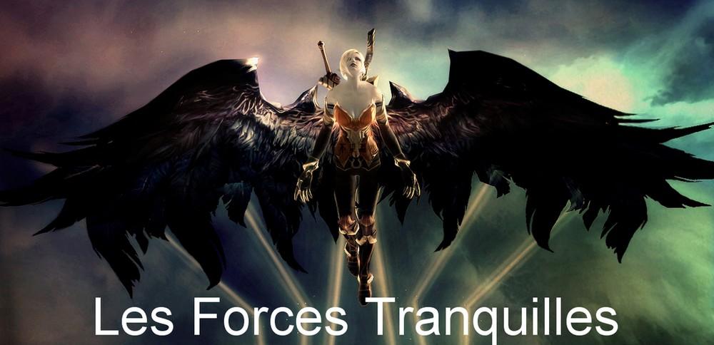 Les Forces Tranquilles Index du Forum