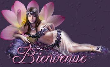 belle-elfe-bienvenue-flora
